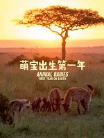[英] 萌寶出生第一年 (Animal Babies: First Year on Earth) (2019)